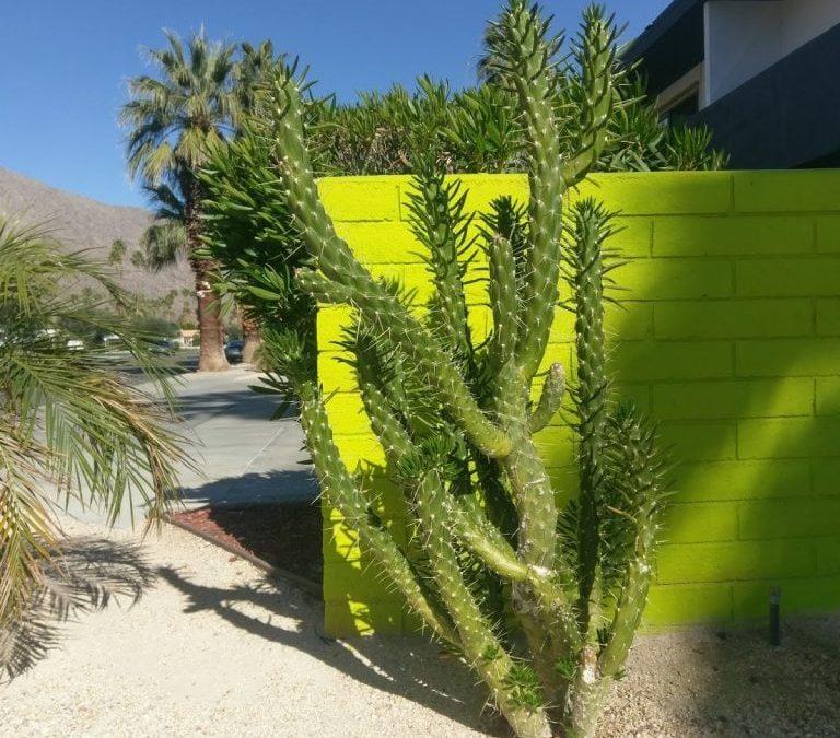 California Dreaming – Part III