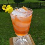 wine based cocktails grapefruit aperol spritz