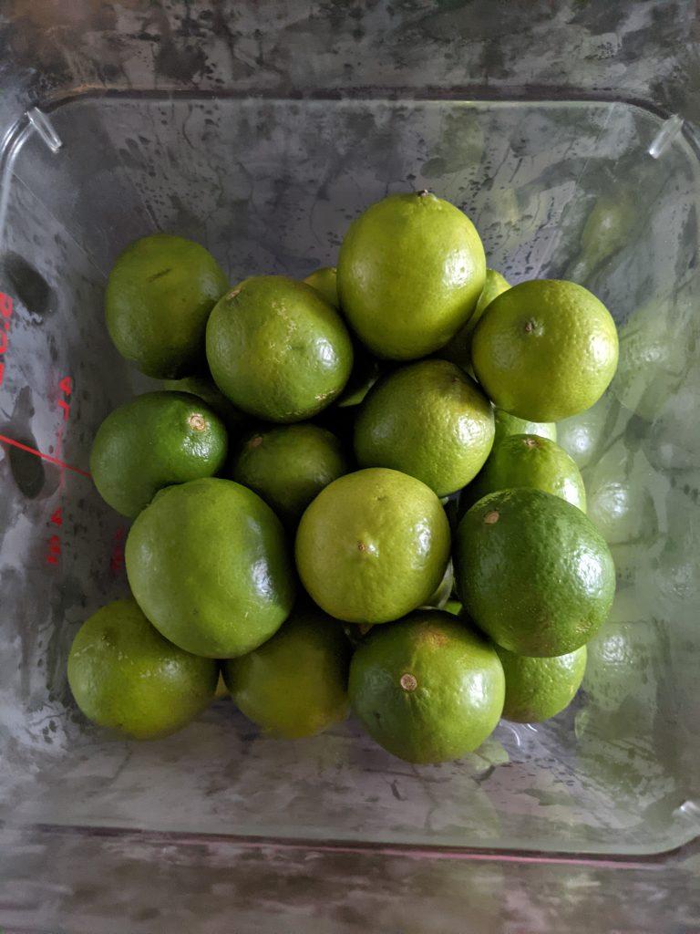 cambro bin of limes